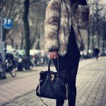 CHIC & FURRY